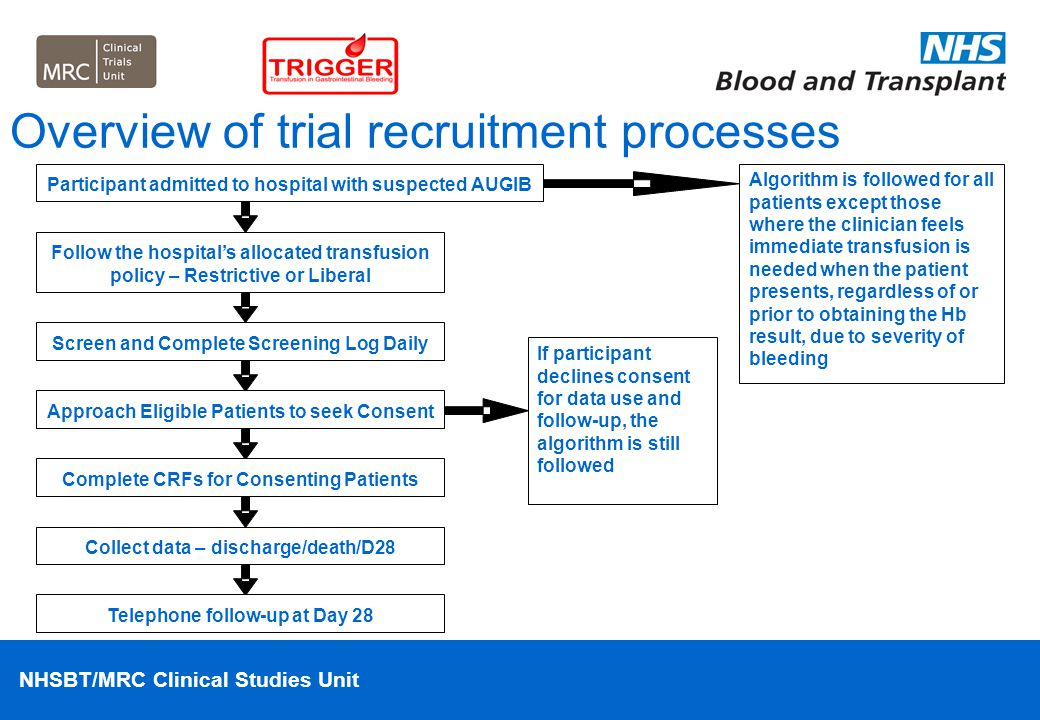 Overview of trial recruitment processes