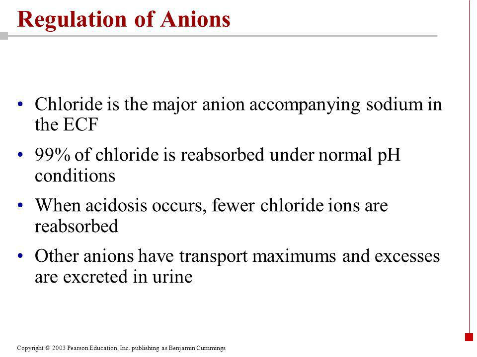 Regulation of Anions Chloride is the major anion accompanying sodium in the ECF. 99% of chloride is reabsorbed under normal pH conditions.