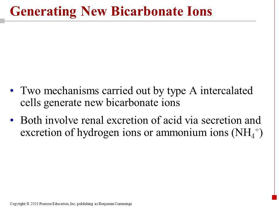 Generating New Bicarbonate Ions