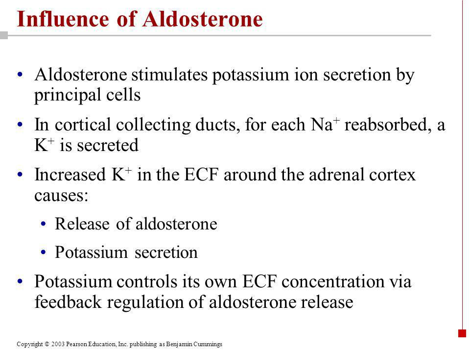 Influence of Aldosterone