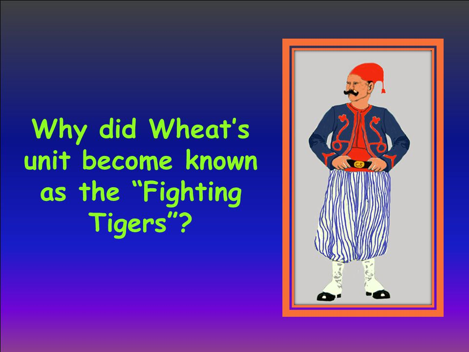 Why did Wheat's unit become known as the Fighting Tigers