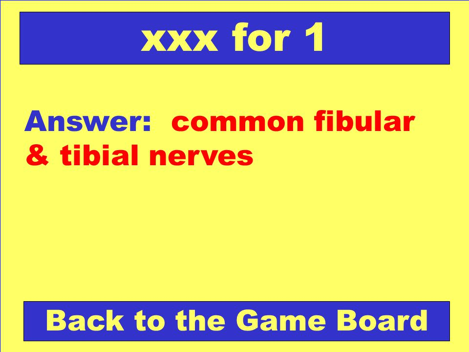 xxx for 1 Answer: common fibular & tibial nerves