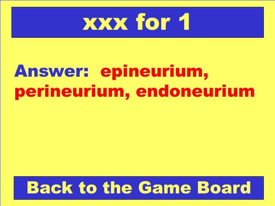 xxx for 1 Answer: epineurium, perineurium, endoneurium