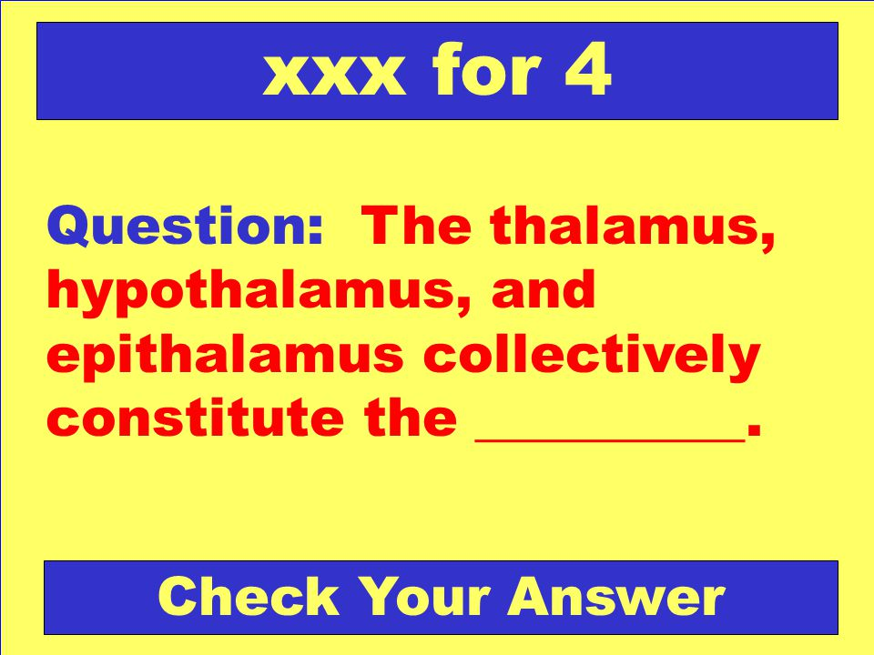 xxx for 4 Question: The thalamus, hypothalamus, and epithalamus collectively constitute the __________.