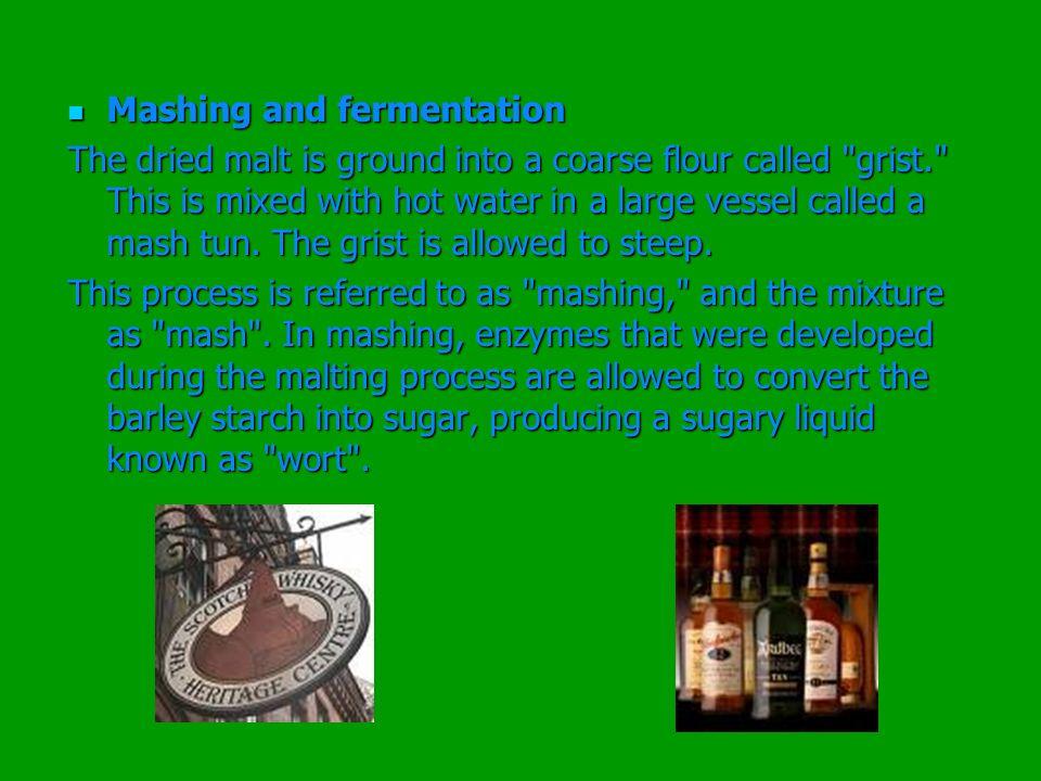 Mashing and fermentation