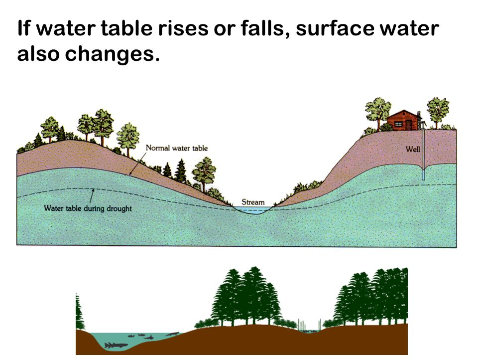 If water table rises or falls, surface water also changes.