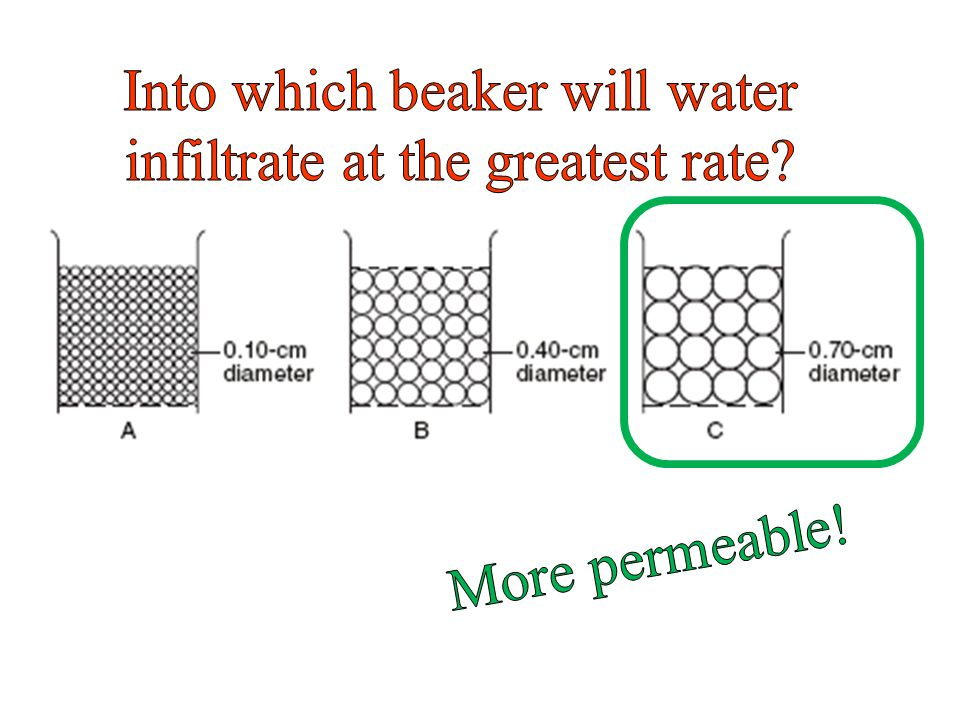 Into which beaker will water infiltrate at the greatest rate