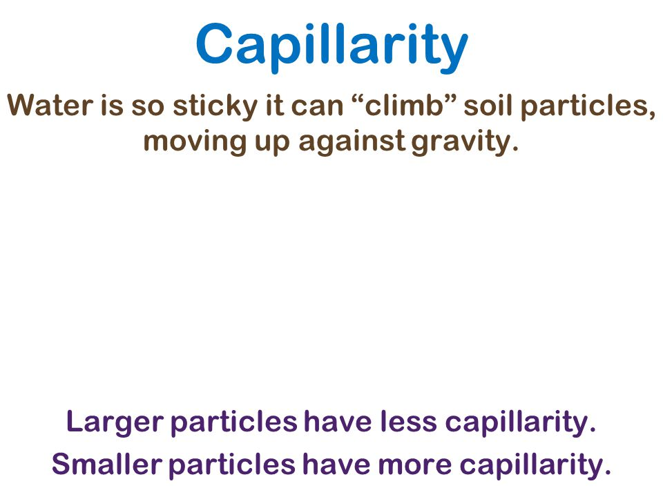 Capillarity Water is so sticky it can climb soil particles, moving up against gravity. Larger particles have less capillarity.