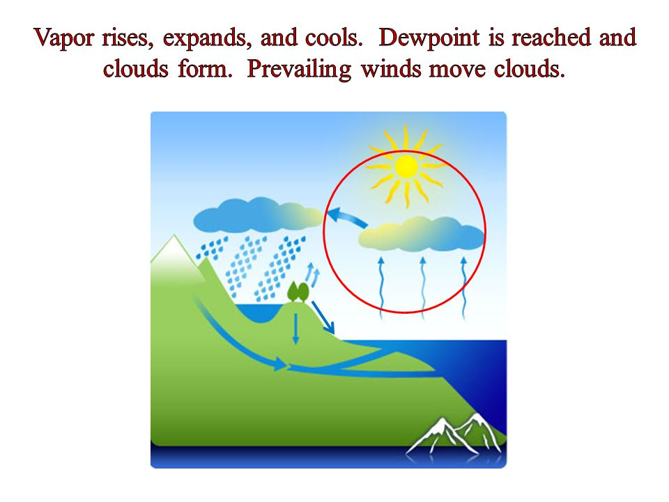 Vapor rises, expands, and cools. Dewpoint is reached and clouds form