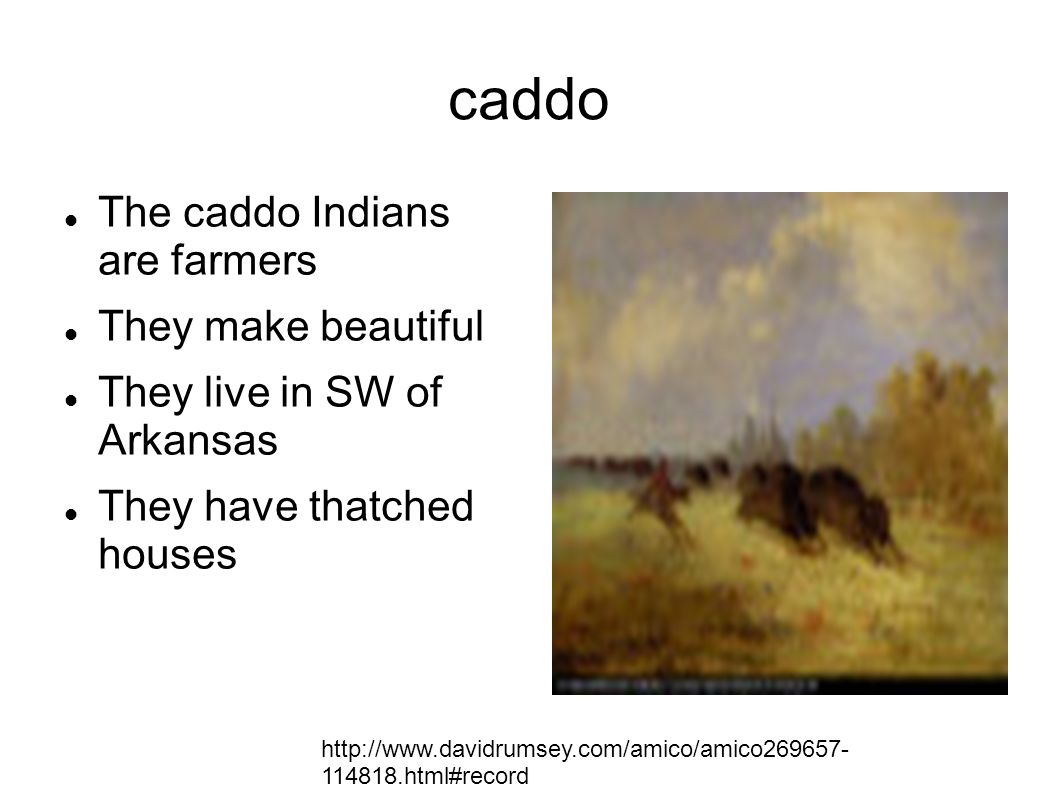 caddo The caddo Indians are farmers They make beautiful