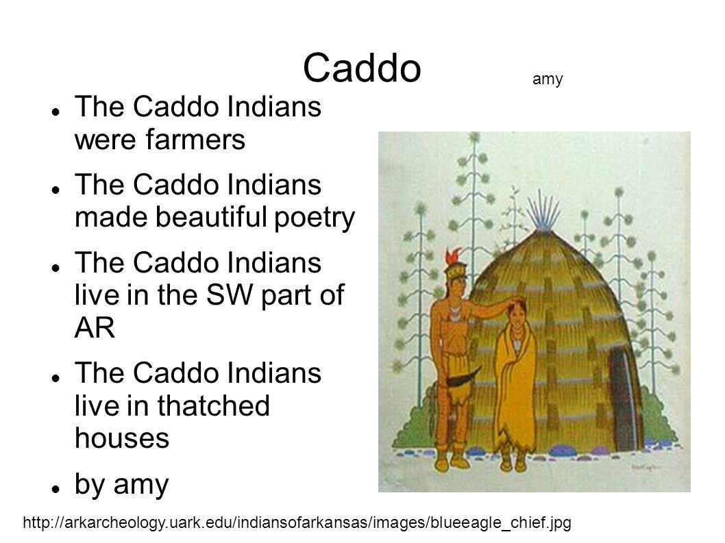 Caddo The Caddo Indians were farmers