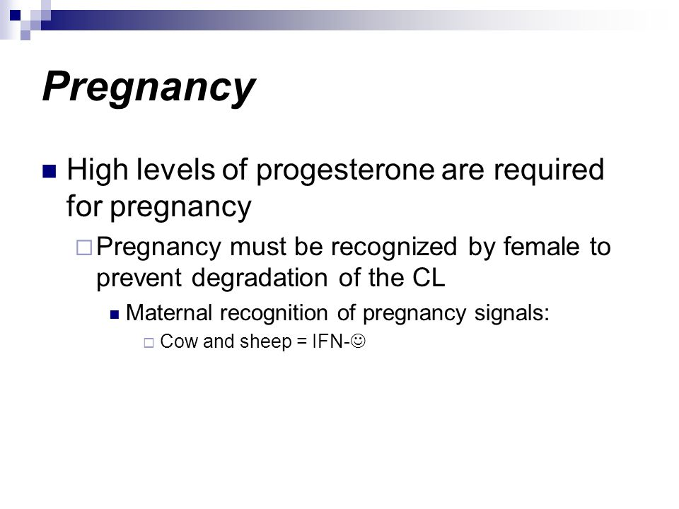 Pregnancy High levels of progesterone are required for pregnancy