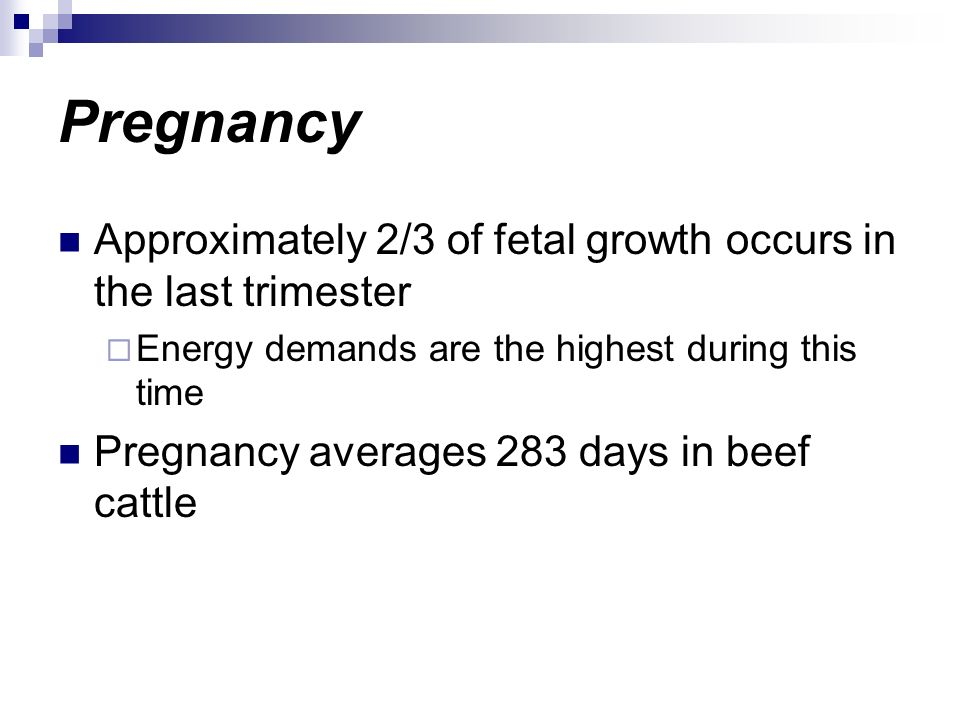 Pregnancy Approximately 2/3 of fetal growth occurs in the last trimester. Energy demands are the highest during this time.