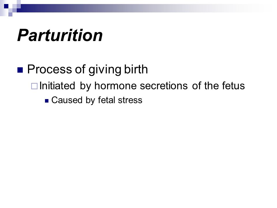 Parturition Process of giving birth