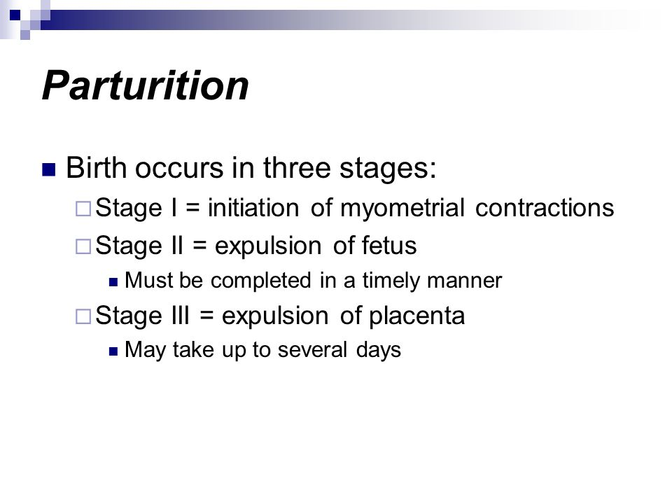 Parturition Birth occurs in three stages: