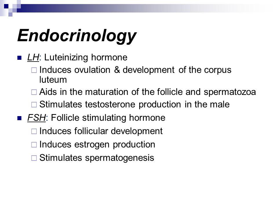 Endocrinology LH: Luteinizing hormone