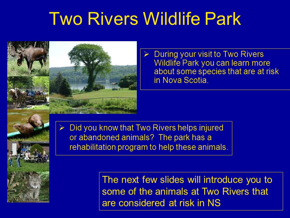 Two Rivers Wildlife Park