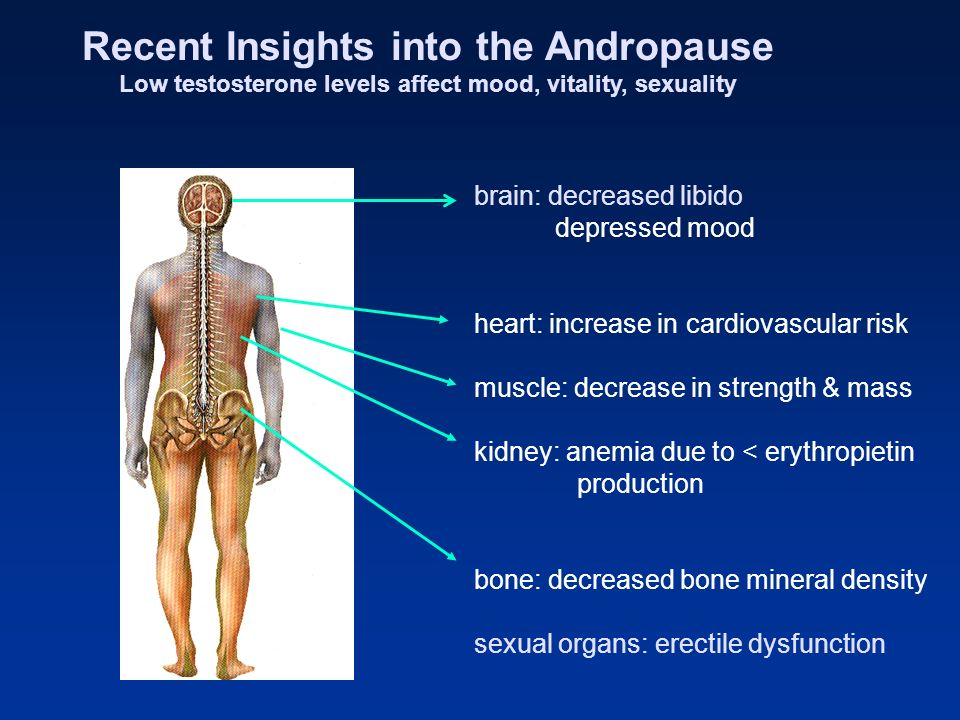 Recent Insights into the Andropause
