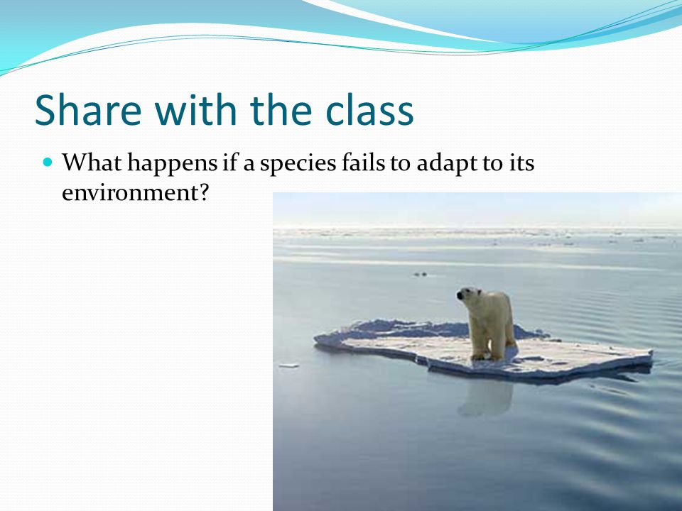 Share with the class What happens if a species fails to adapt to its environment