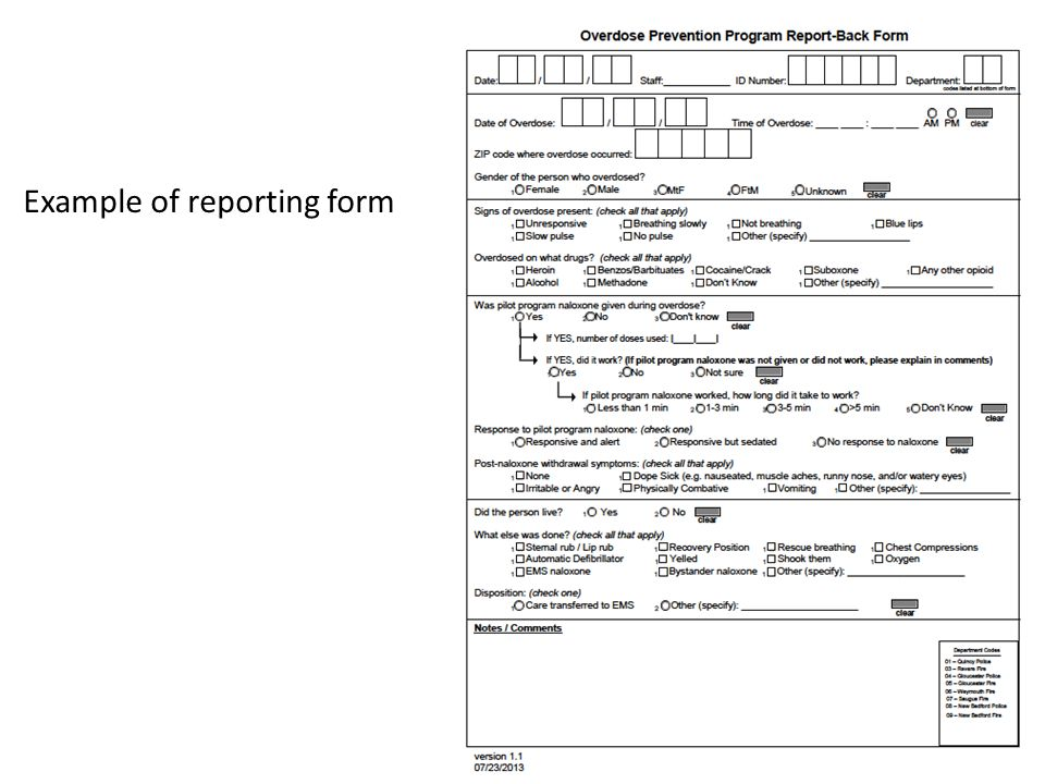 Example of reporting form