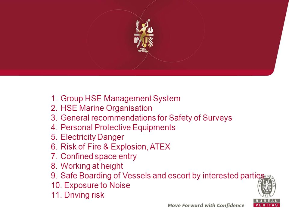 Group HSE Management System