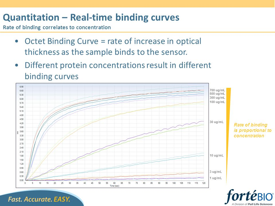 Quantitation – Real-time binding curves Rate of binding correlates to concentration