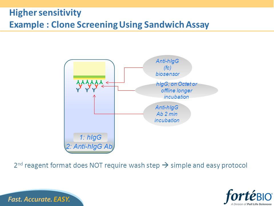 Example : Clone Screening Using Sandwich Assay