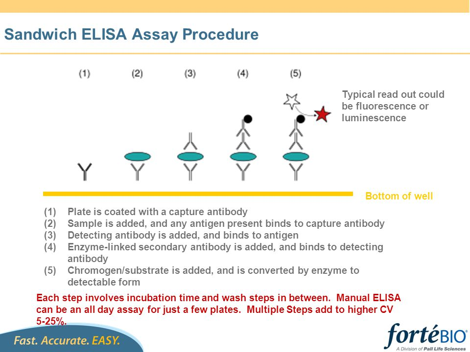 Sandwich ELISA Assay Procedure