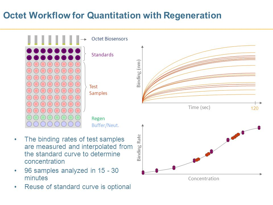 Octet Workflow for Quantitation with Regeneration