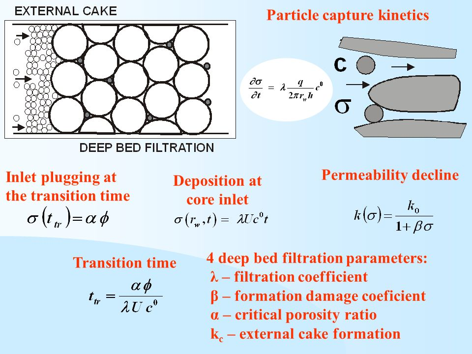 Particle capture kinetics