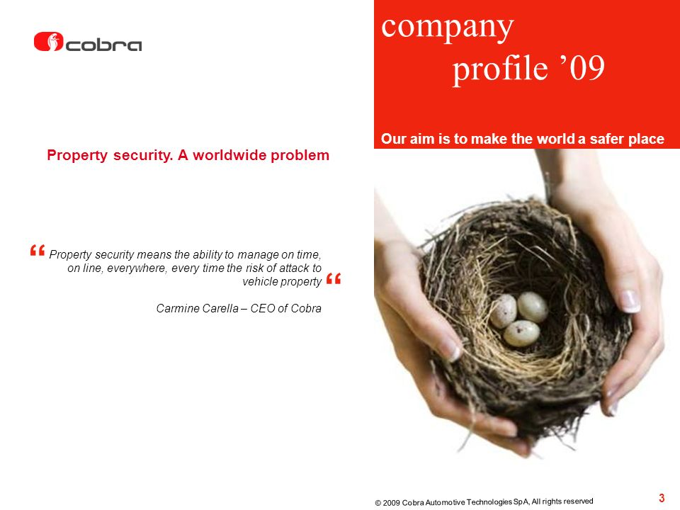 company profile '09 Property security. A worldwide problem