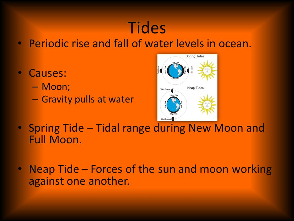 Tides Periodic rise and fall of water levels in ocean. Causes: