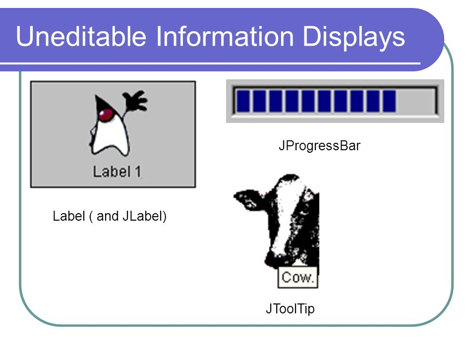 Uneditable Information Displays