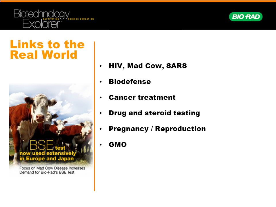 Links to the Real World HIV, Mad Cow, SARS Biodefense Cancer treatment