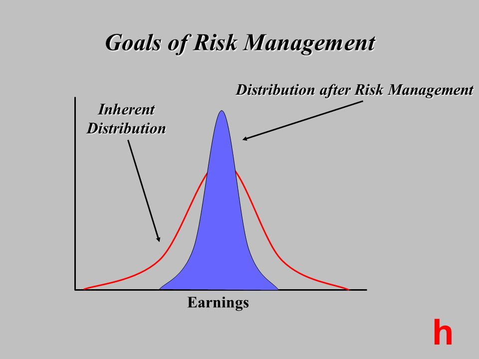 Goals of Risk Management