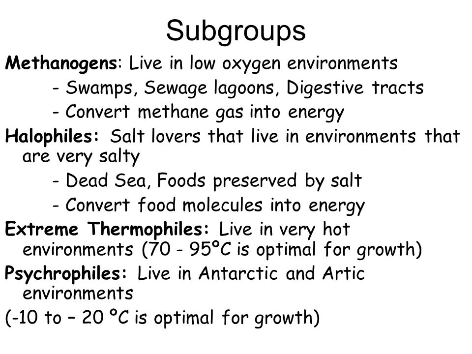 Subgroups Methanogens: Live in low oxygen environments