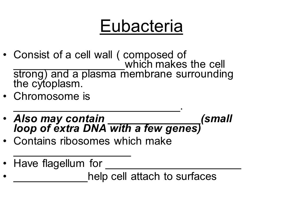 Eubacteria Consist of a cell wall ( composed of __________________which makes the cell strong) and a plasma membrane surrounding the cytoplasm.