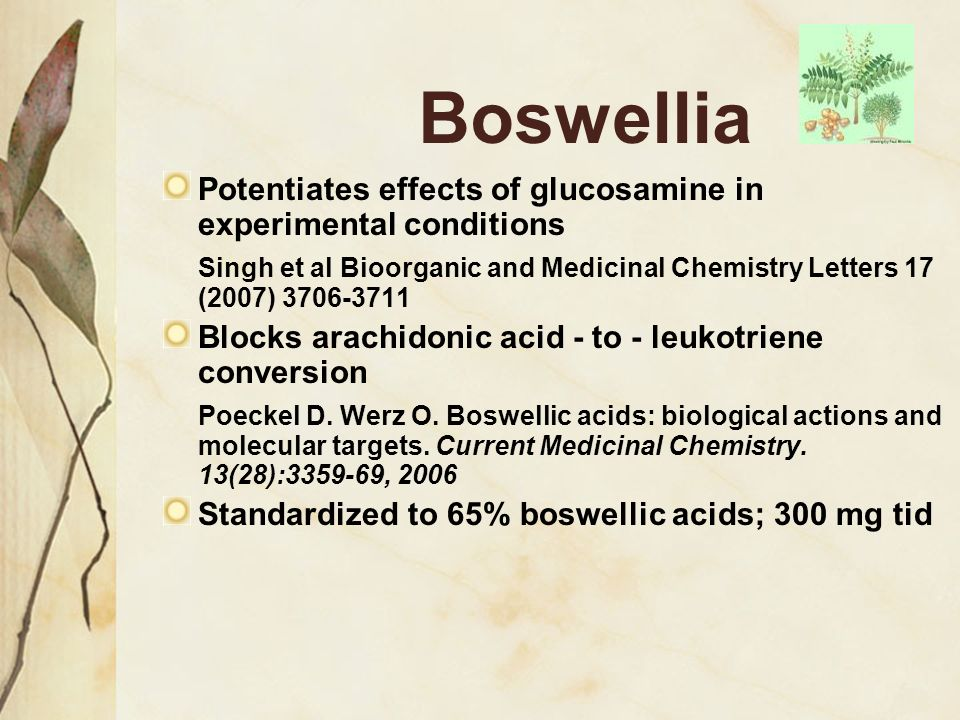 Boswellia Potentiates effects of glucosamine in experimental conditions. Singh et al Bioorganic and Medicinal Chemistry Letters 17 (2007) 3706-3711.
