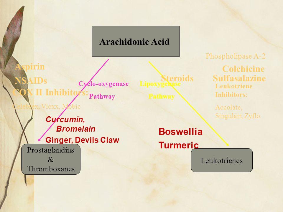 Arachidonic Acid Aspirin Colchicine Steroids Sulfasalazine NSAIDs