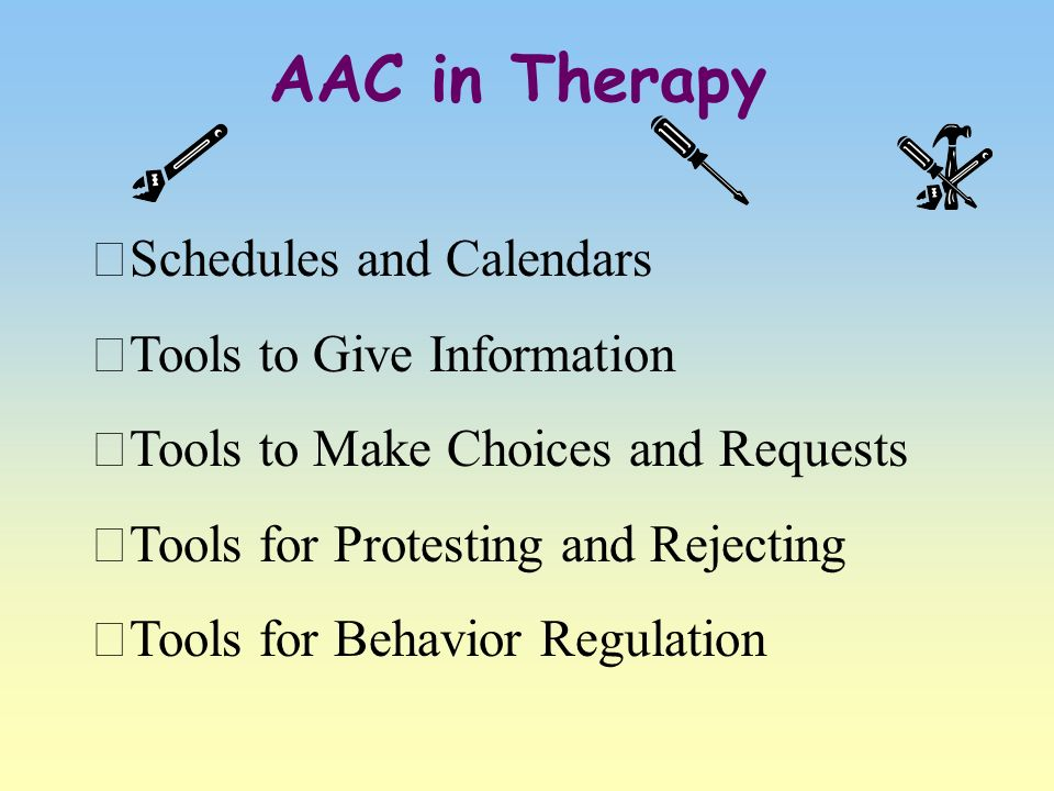AAC in Therapy Schedules and Calendars Tools to Give Information