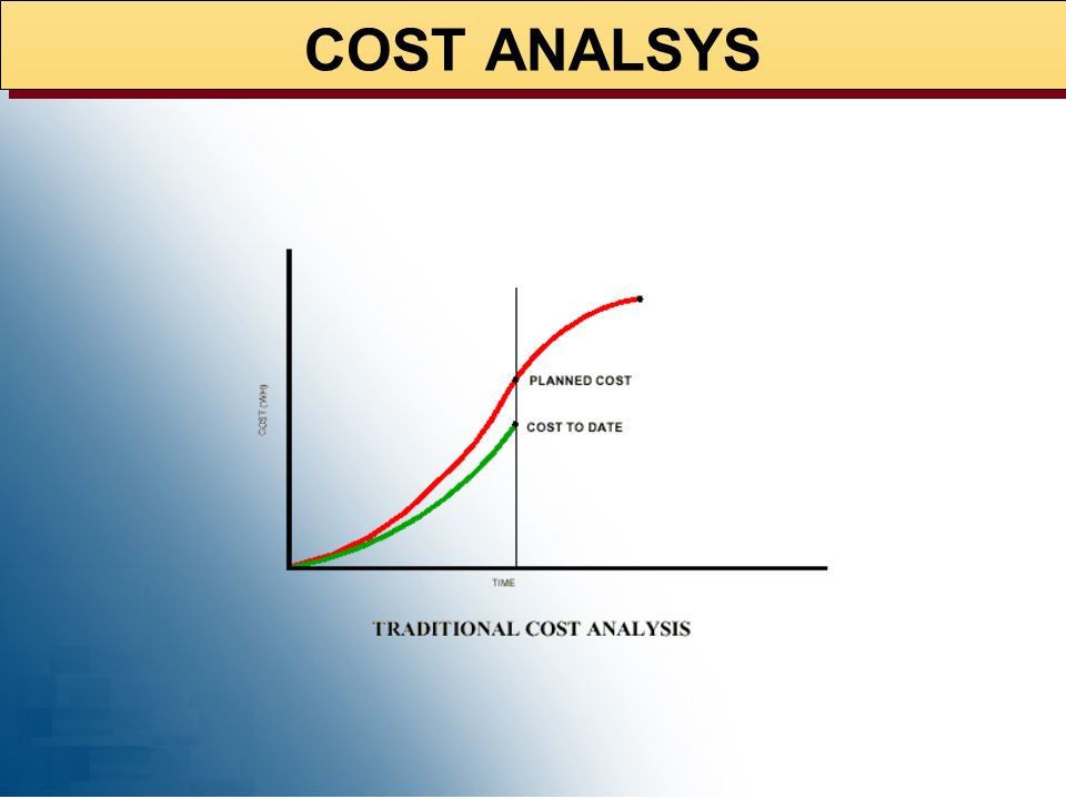 COST ANALSYS 02/10/99 2
