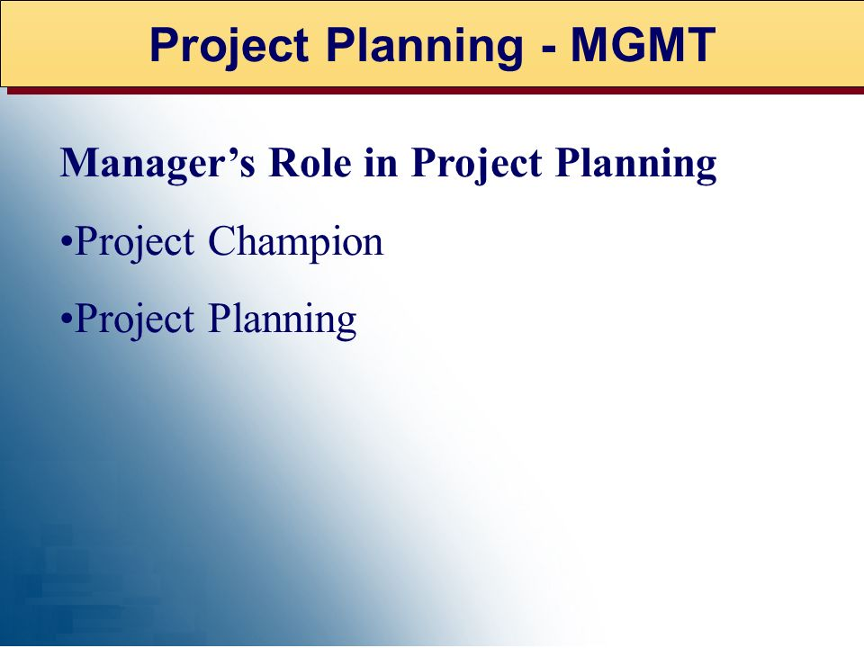 Project Planning - MGMT