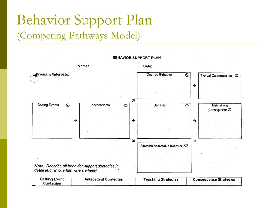 Behavior Support Plan (Competing Pathways Model)