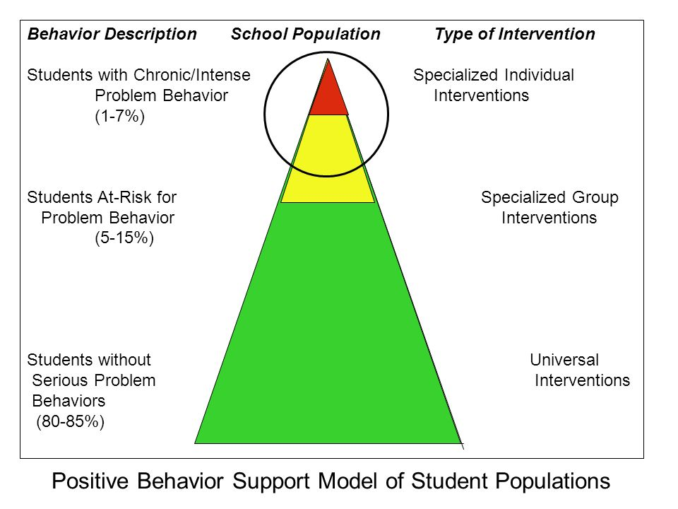 Positive Behavior Support Model of Student Populations