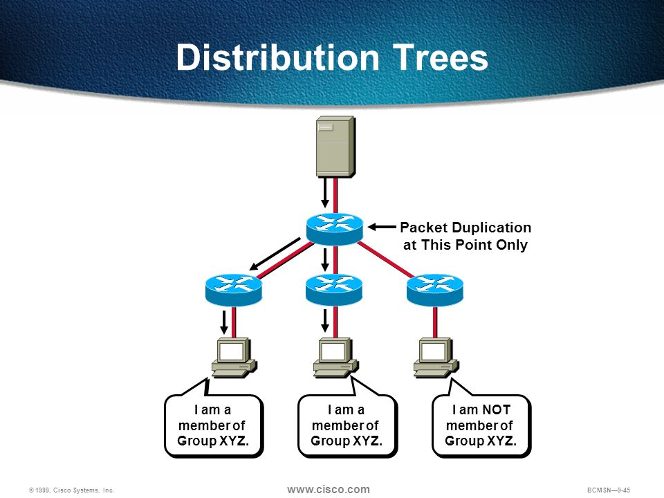 Distribution Trees Packet Duplication at This Point Only I am a