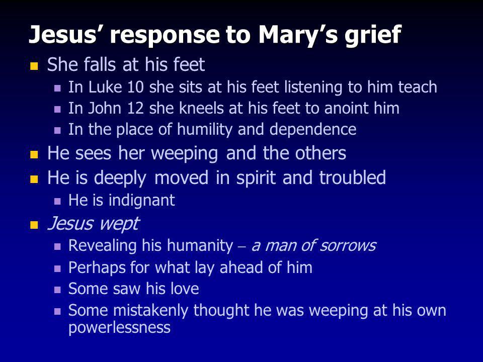 Jesus' response to Mary's grief