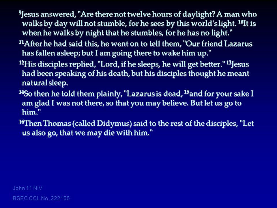 9Jesus answered, Are there not twelve hours of daylight