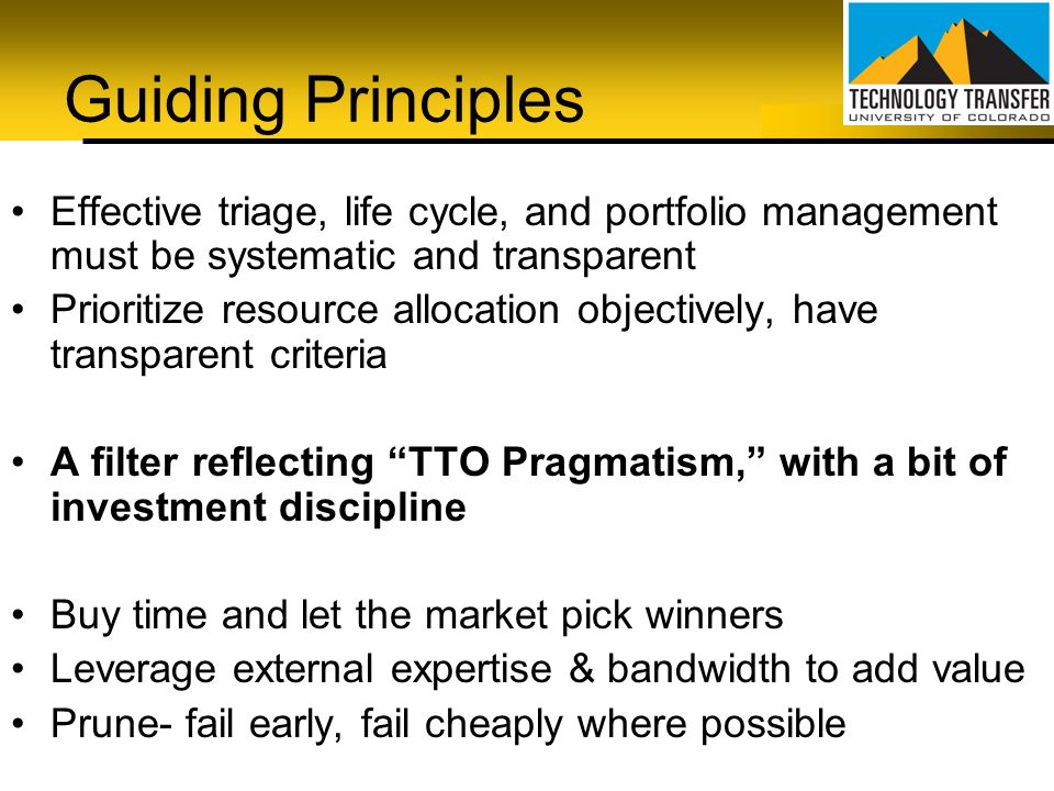 Guiding Principles Effective triage, life cycle, and portfolio management must be systematic and transparent.