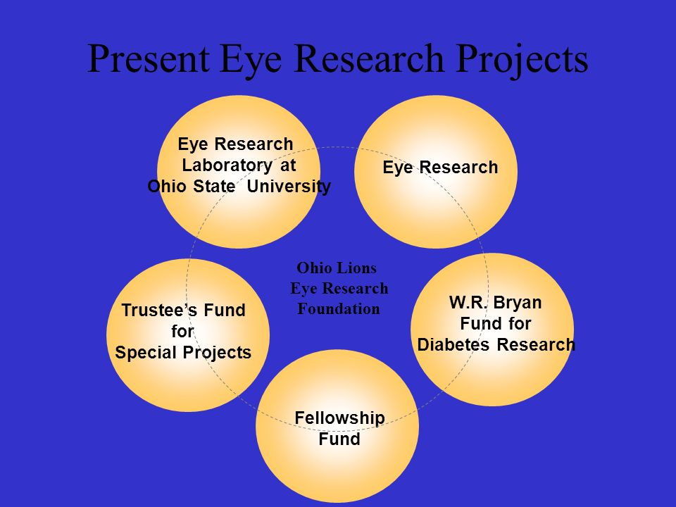 Present Eye Research Projects