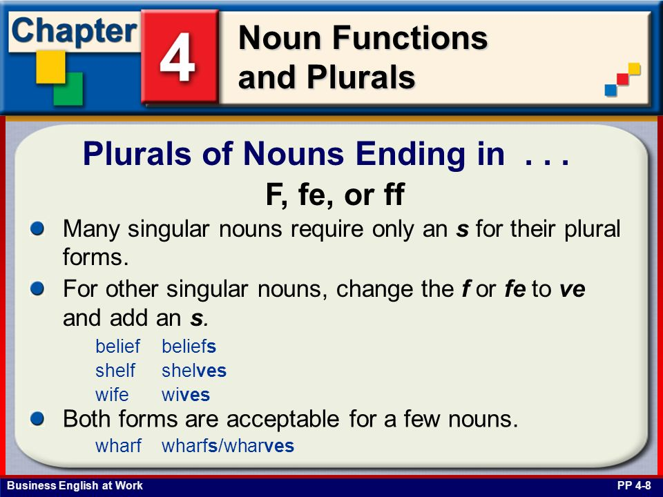 Plurals of Nouns Ending in . . .